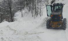 Trabzon'da kar ve buzla mücadele sürüyor