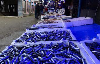 Balıkçılar hamsiden umudunu kesti
