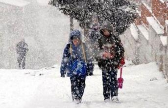 Artvin'de kar tatili uzadı