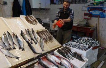 Trabzon'da yerli balık kalmadı