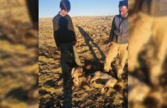 Yavru köpekler vahşice öldürüldü