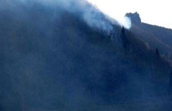 Trabzon'daki orman yangınları kontrol altında