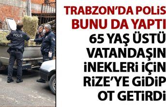 Polis 65 yaş üstü vatandaşın inekleri için ot...