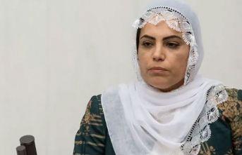 HDP'li vekil Remziye Tosun'a soruşturma