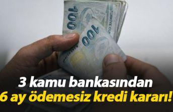 3 kamu bankasından 6 ay ödemesiz kredi paketi