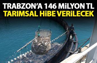 Trabzon'da 14 milyon 724 bin TL hibe verilecek