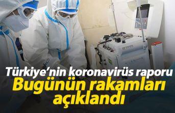 Türkiye'de koronavirüs raporu - İşte günün tablosu