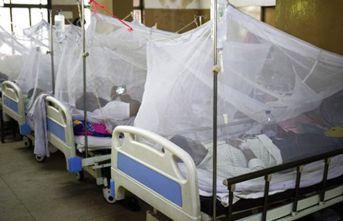 Dünya koronavirüsle boğuşurken yeni bir salgın ortaya çıtkı! 254 ölü