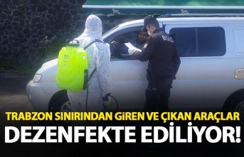 Trabzon sınırından giren araçlara ilaçlama