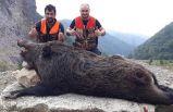 Avcılar bile şaşırdı - Trabzon'da böylesi ilk kez...