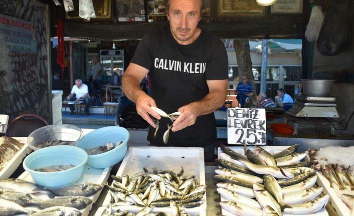 Balıkçıların umudu palamut