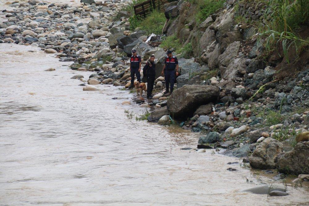 Rize'de selde kaybolan Hüseyin Çapoğlu'nu kır arıyor