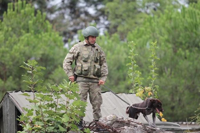 Sınır ötesi operasyonlara Trabzon Zerdavası