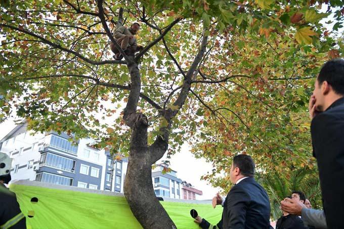 İntihar etmek için ağaca çıktı Bakın kim ikna etti