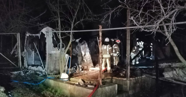 Beykoz'da bir çiftlikte korkutan yangın, çobanlar faciayı engelledi