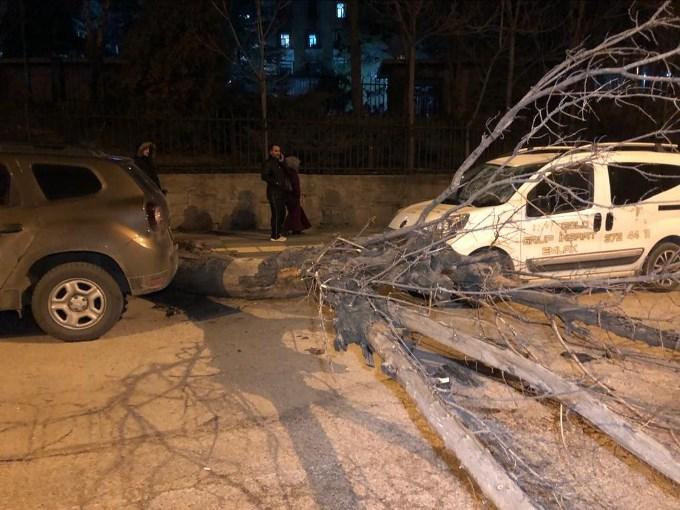 Başkent'te ağaç minibüsün üstüne devrildi