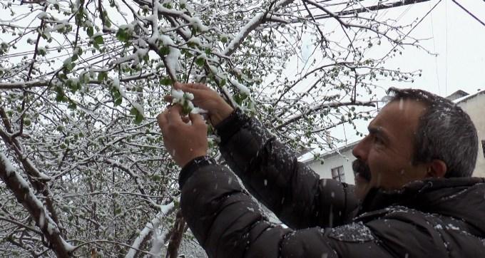 Fındık üreticisinde kar endişesi
