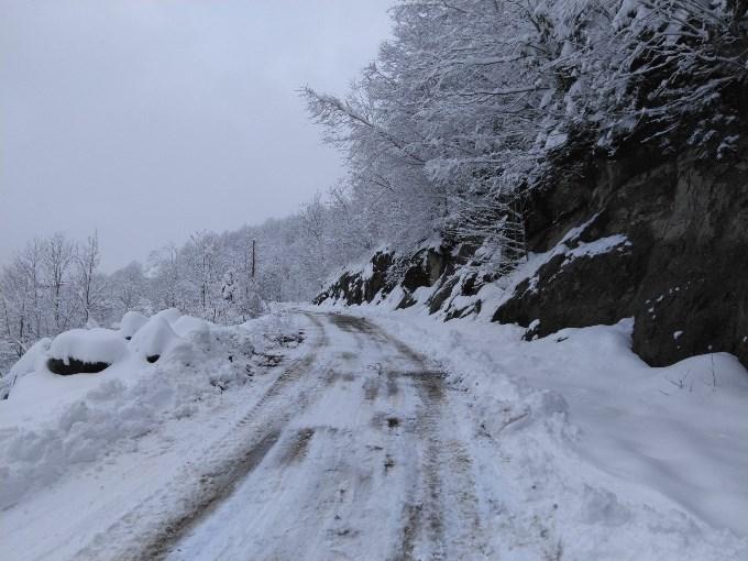 Trabzon'da karla mücadele! Tüm yollar açıldı