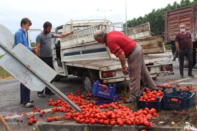 Karadeniz Sahil Yolu'nda kaza! Domatesler yola saçıldı
