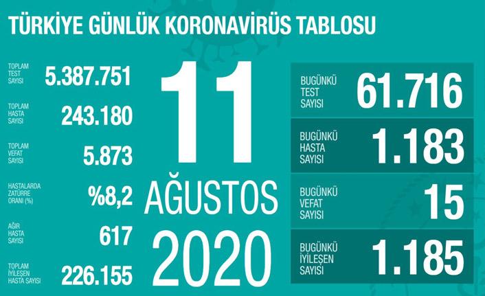 Türkiye'de günün koronavirüs raporu - 11.08.2020