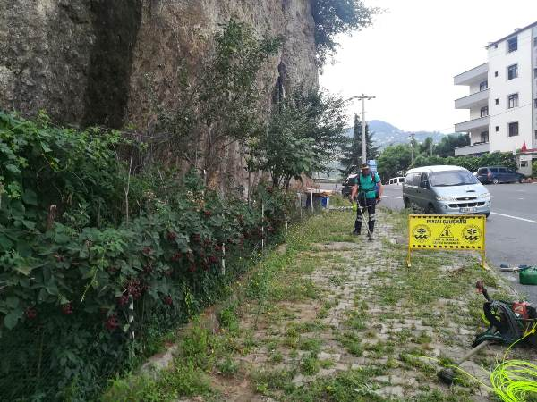 Trabzon'da peyzaj ve bakım çalışmaları devam ediyor