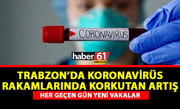 Trabzon'da iki hastaneye daha koronavirüs görevi