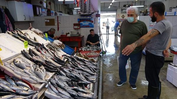Trabzon'da palamut sevindiriyor İstavrit ve mezgit üzüyor