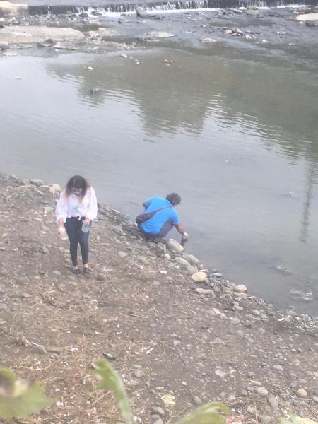 Trabzon'da derede etrafa saçılan ölü balıklar endişe yarattı