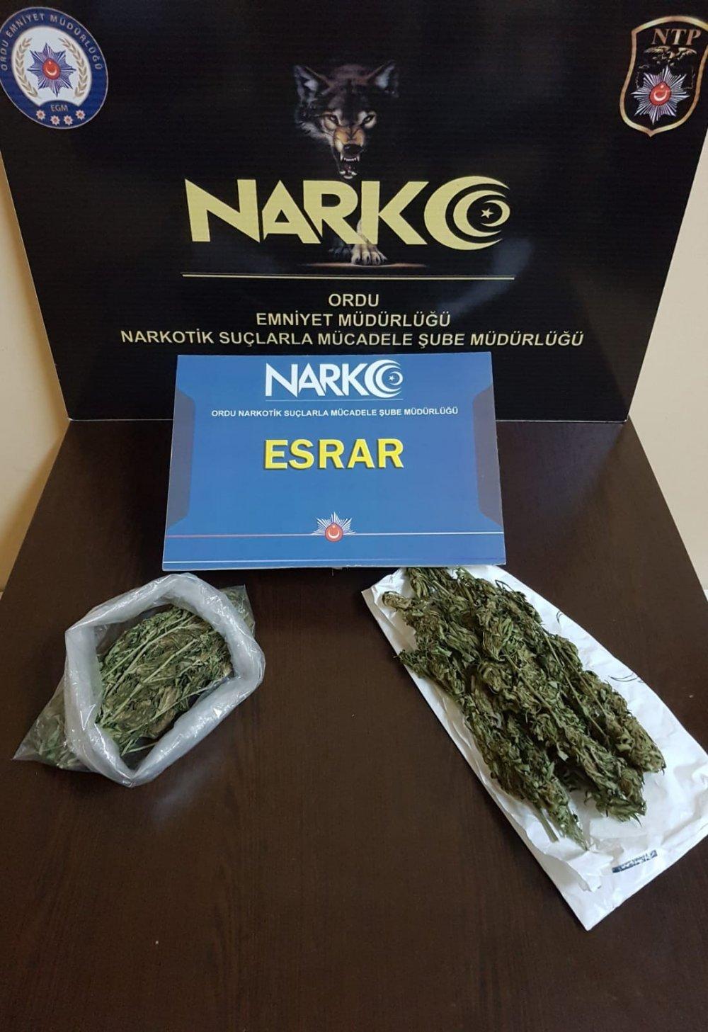 Ordu'da uyuşturucu kontrolleri sıklaştı