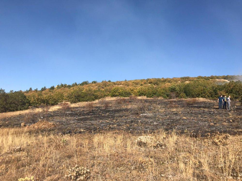 Gümüşhane'de yangın! 8 hektar alan zarar gördü