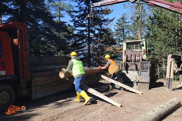 Orman işçilerinin sınavı ormanda olur