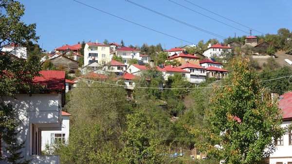 Ordu'da bu mahallede her ev kırmızı-beyaz