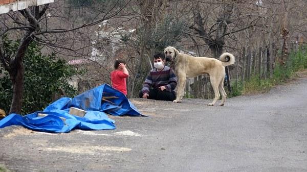 Giresun mahalleye inen kurtlar için sopalı, baltalı nöbet