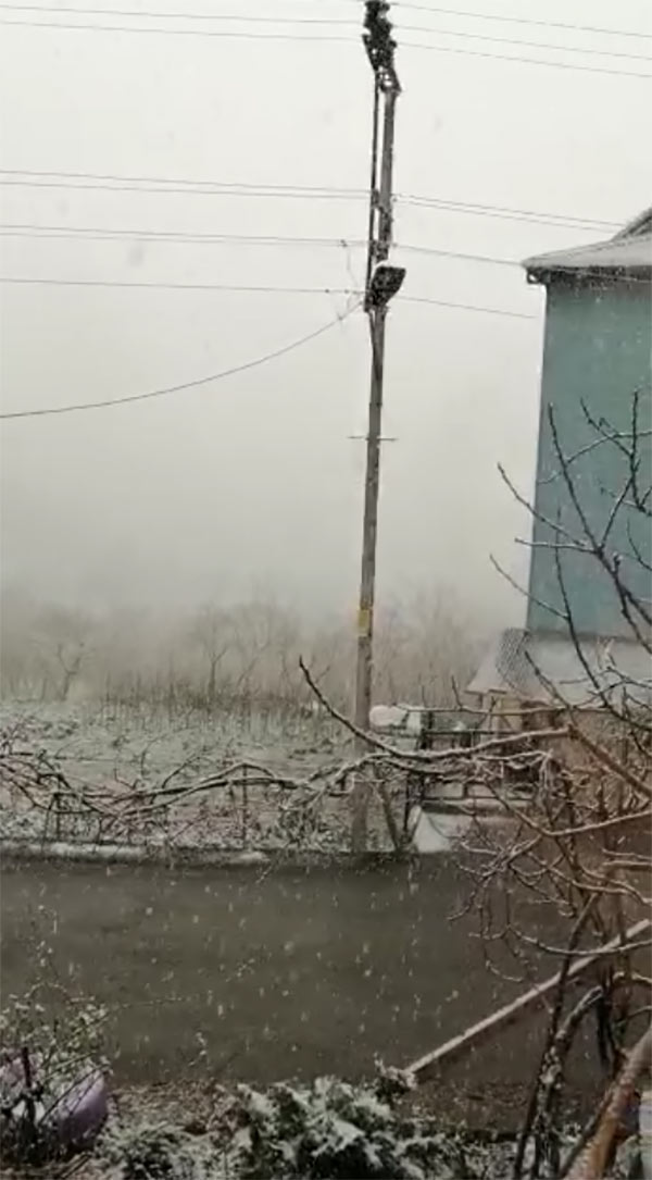 Trabzon'un merkezinde beklenen kar geldi
