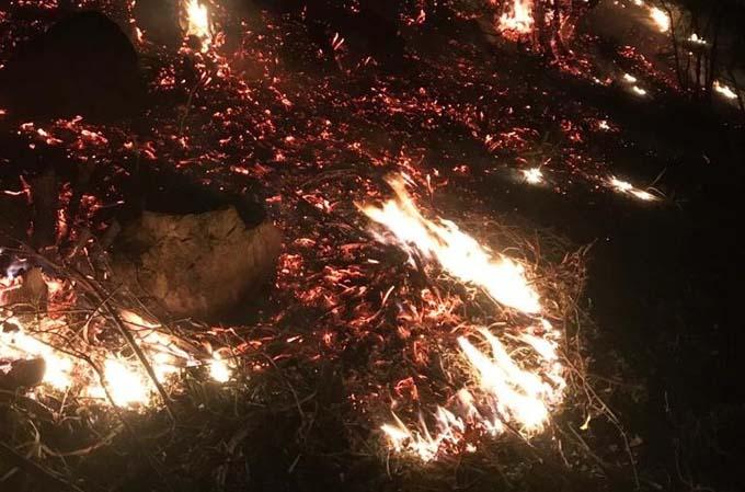 Ordu'da örtü yangınını mahalleli söndürdü