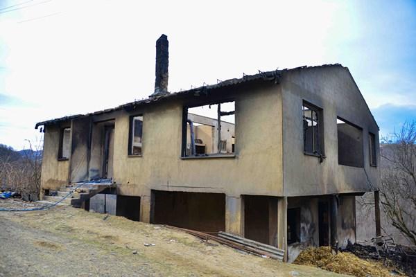 Ordu'da yangın: 400 tavuk telef oldu