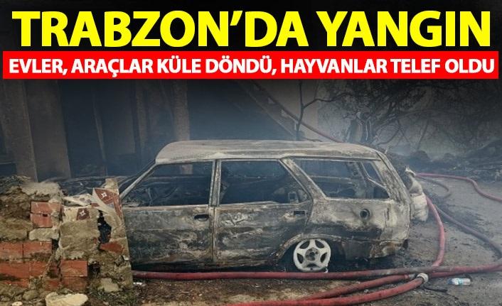 Yaşanan ilginç olayı belediye meclisinde açıkladı! Trabzon'da 112 aradılar Rize çıktı