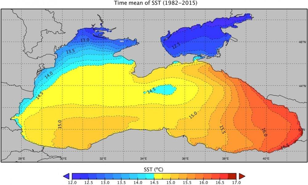 Karadeniz yaşanabilir hacminin üçte birisinden fazlasını kaybetti!