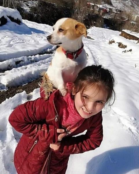 Yaşı küçük ama yüreği büyük! Köpeğini sırtına alıp 2.5 km yürüyerek...