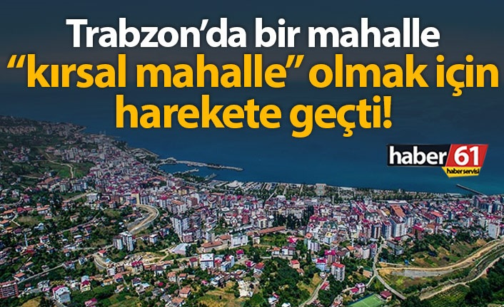Ahmet Kaya'dan Bakan Soylu'ya 7 soruluk 'Kırsal Mahalle' önergesi!