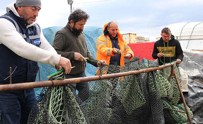 Deniz salyası arttı, balıkçılar kontak kapattı