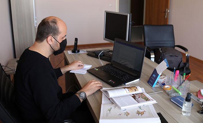 Türkiye'de bulunan kertenkele türü literatüre girdi