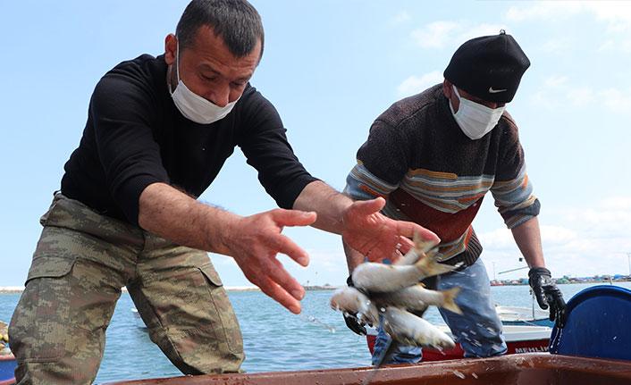 İklim değişikliği balık sezonunu da etkiledi