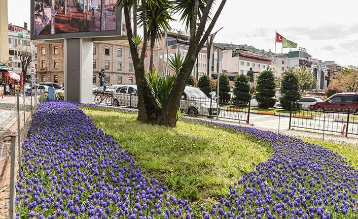 Giresun sokakları çiçeklerle renklendi