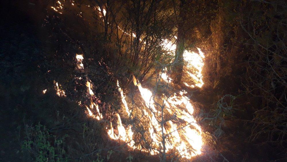 Muğla'da, 5'er dakika arayla ormanlık iki alanda yangın
