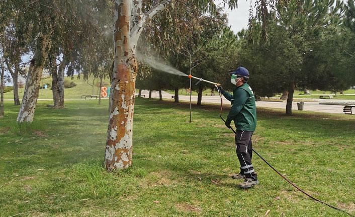 Samsun'da vektör ile mücadele