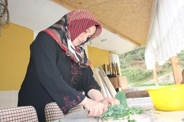 Doğu Karadeniz insanının vazgeçilmezi kara lahana