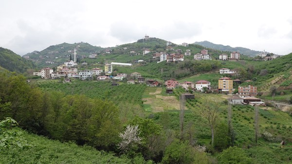 Trabzon'da kısıtlama öncesi köylere ve yaylalara kaçış
