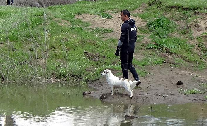 Sokak köpeğinden büyük vefa örneği