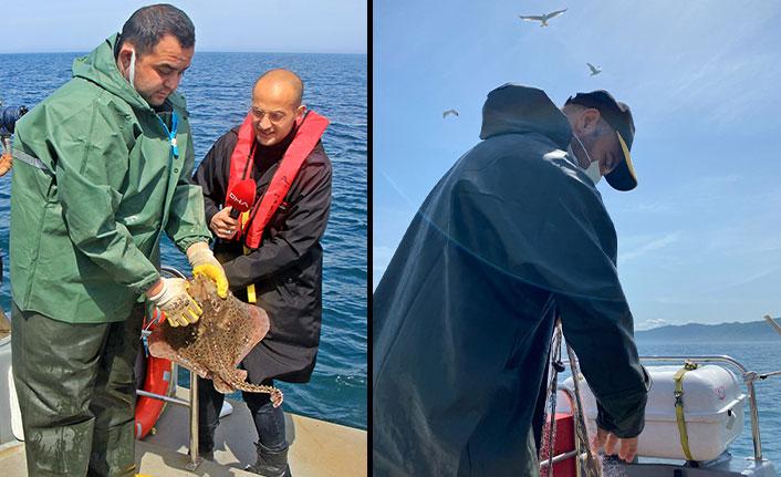 Karadeniz'de av yasağı sonrası sıkı denetim